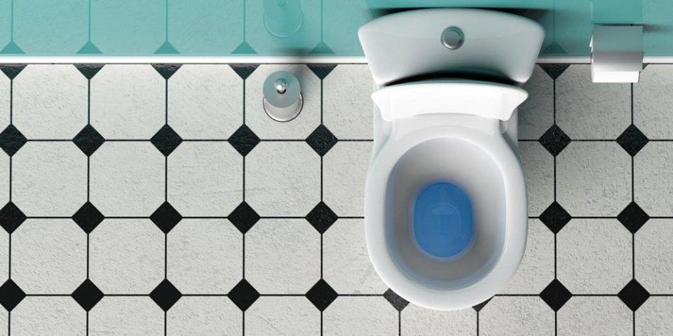 toilettes station épuration autonome