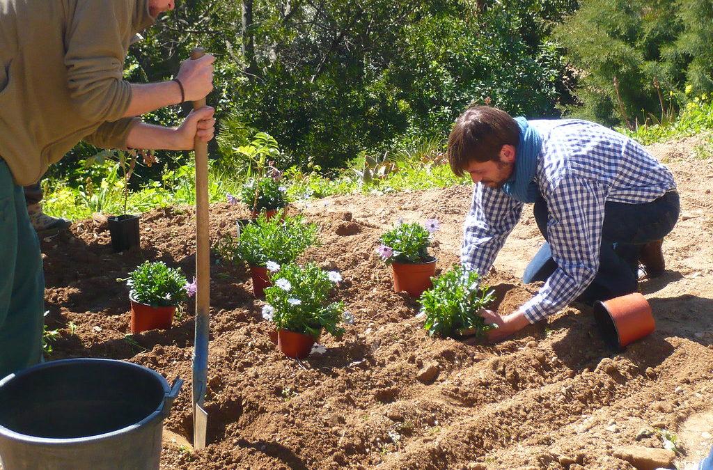 Comment choisir un bon jardinier ?