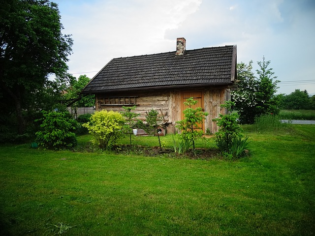 Faire de votre maison une habitation écologique : les conseils
